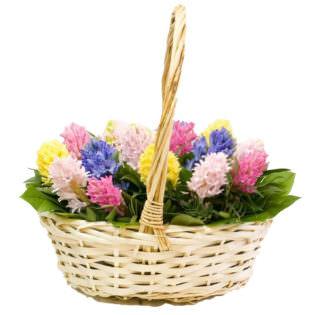 Цветы в корзинке «Буйство красок»
